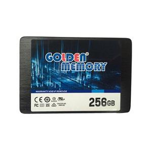 حافظه اس اس دی گلدن با ظرفیت 256 گیگابایت | SSD Golden 256GB